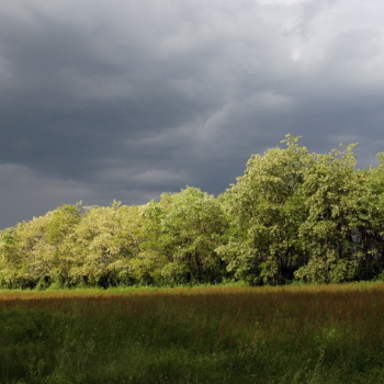 severe-weather-in-alabama